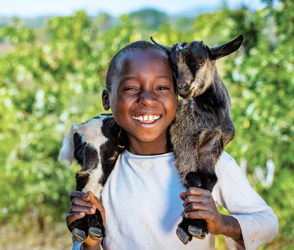 Donate a goat to Africa